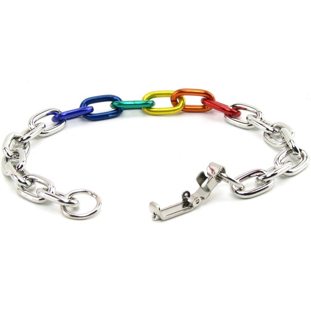 Gaysentials Rainbow and Silver Link Bracelet - View #2