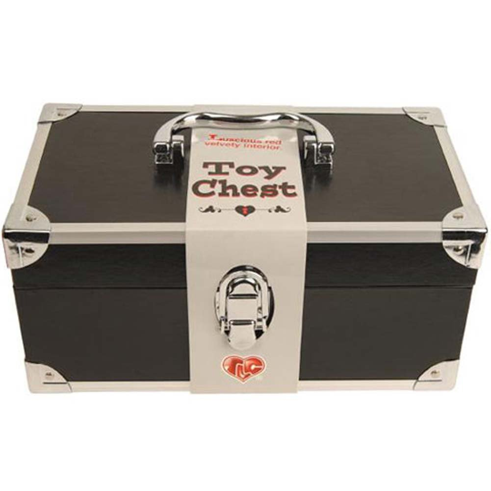 Toy Chest Black 11 In. By 5 In. With FREE 7 In. Silver Vibe - View #1