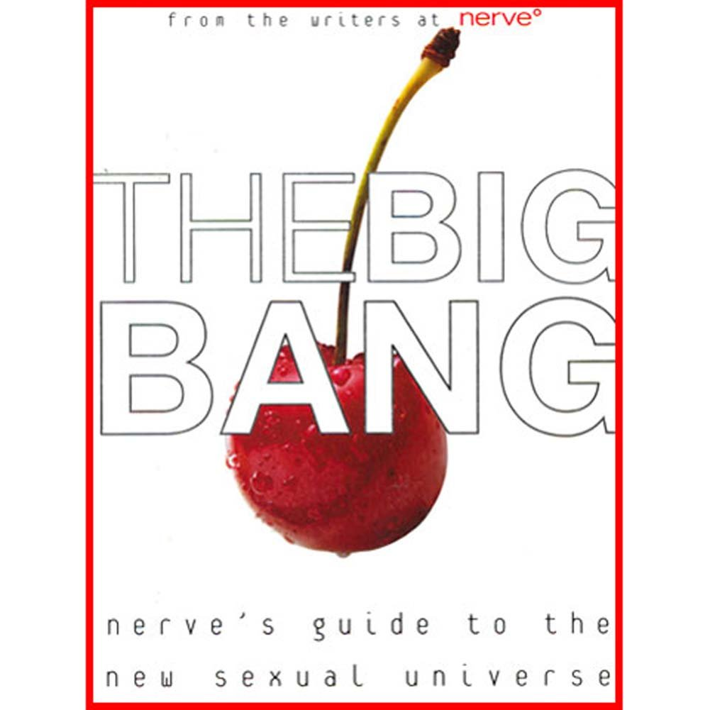 Big Bang A Guide to the New Sexual Universe Book - View #1