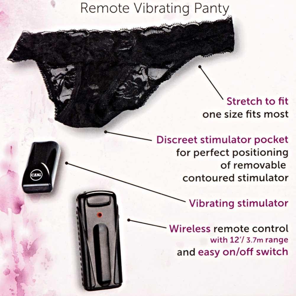 California Exotics Dr. Laura Berman Intimate Basics Astrea I Remote Vibrating Briefs - View #1