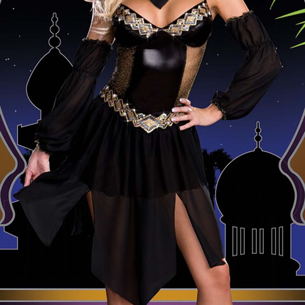 Harem Nights Woman Costume Extra Small - View #4