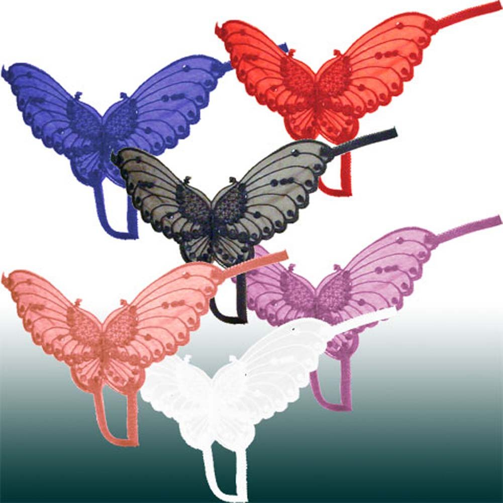 Sheer Butterfly Crotchless Panties One Size Assorted Colors Pack of 12 - View #1