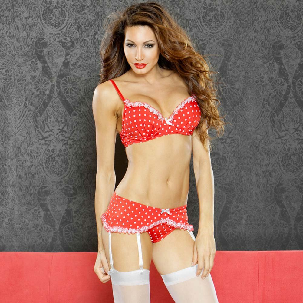 Perfect Pin Up Padded Bra with Garter Belt and Panty Plus 1X - View #1