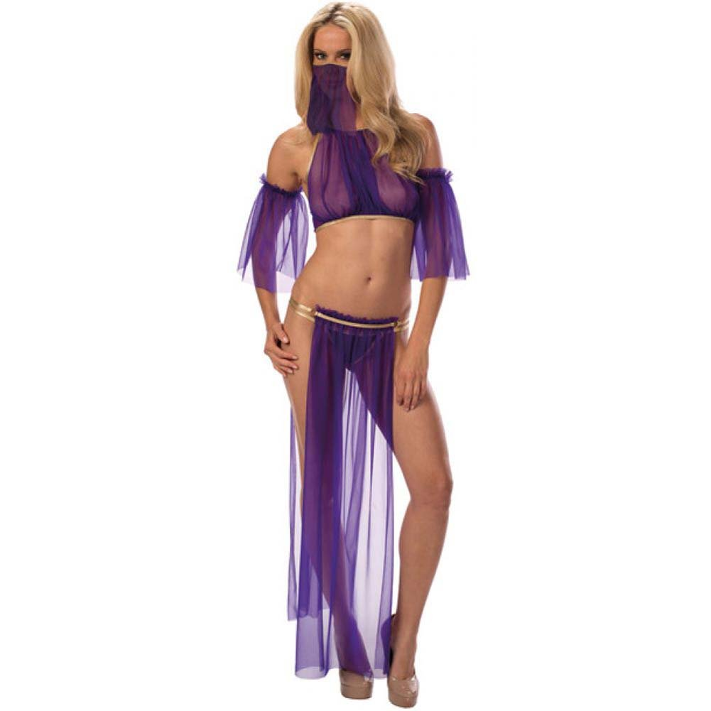 Sexy Belly Dancer Top Arm Sleeves Half Skirt and Panty Midnight Purple Gold One Size - View #2