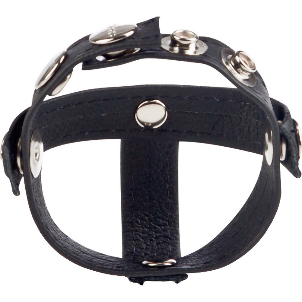 Colt Gear Leather Cock Strap with H Piece Ball Divider by CalExotics Black - View #3