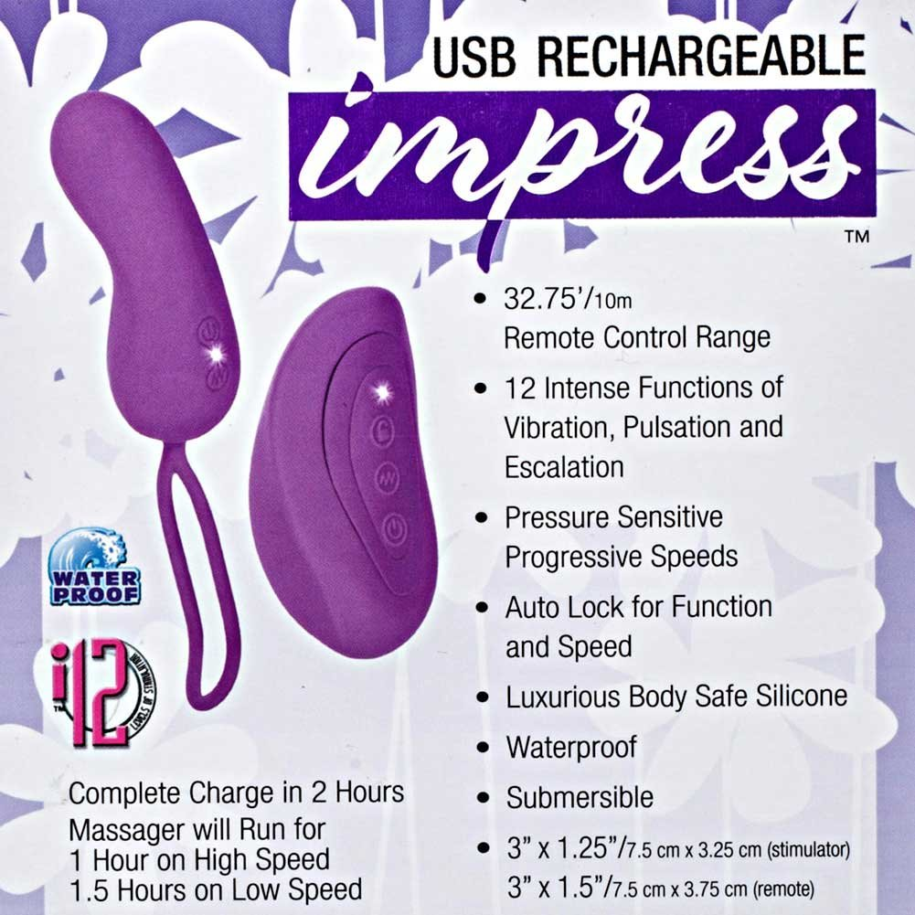 Impress USB Rechargeable Remote Teaser Purple - View #1