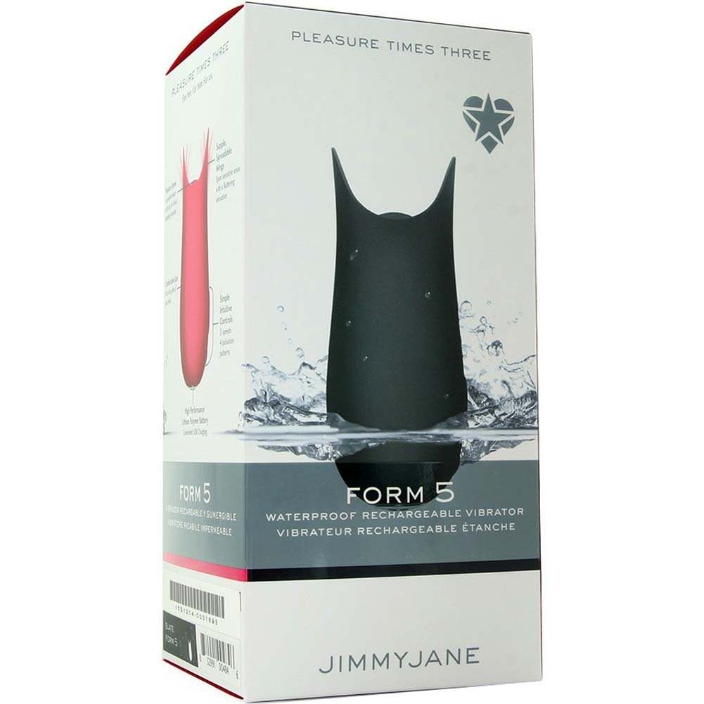 "Jimmyjane Form 5 USB Rechargeable Vibrator 4"" Slate - View #1"