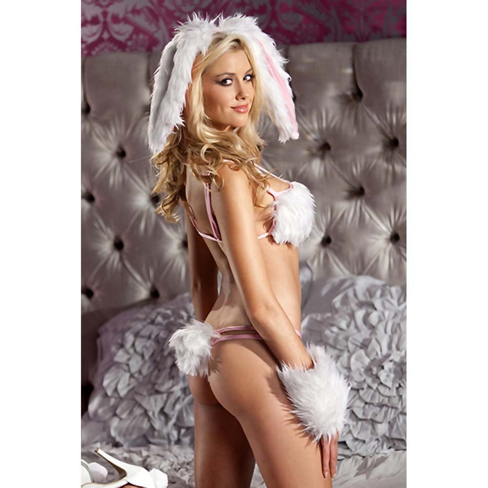 Be Wicked Playful Bunny Costume 4 Pieces Set Small/Medium - View #2