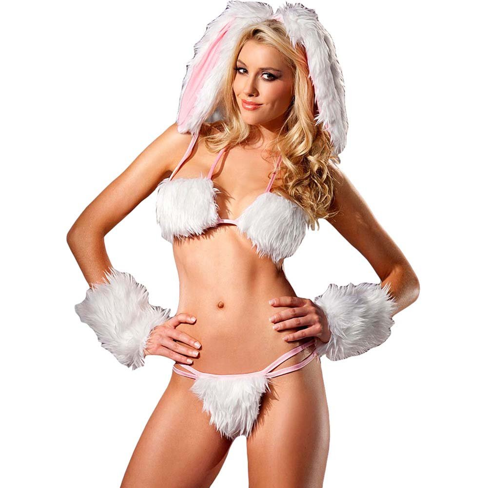 Be Wicked Playful Bunny Costume 4 Pieces Set Medium/Large - View #1