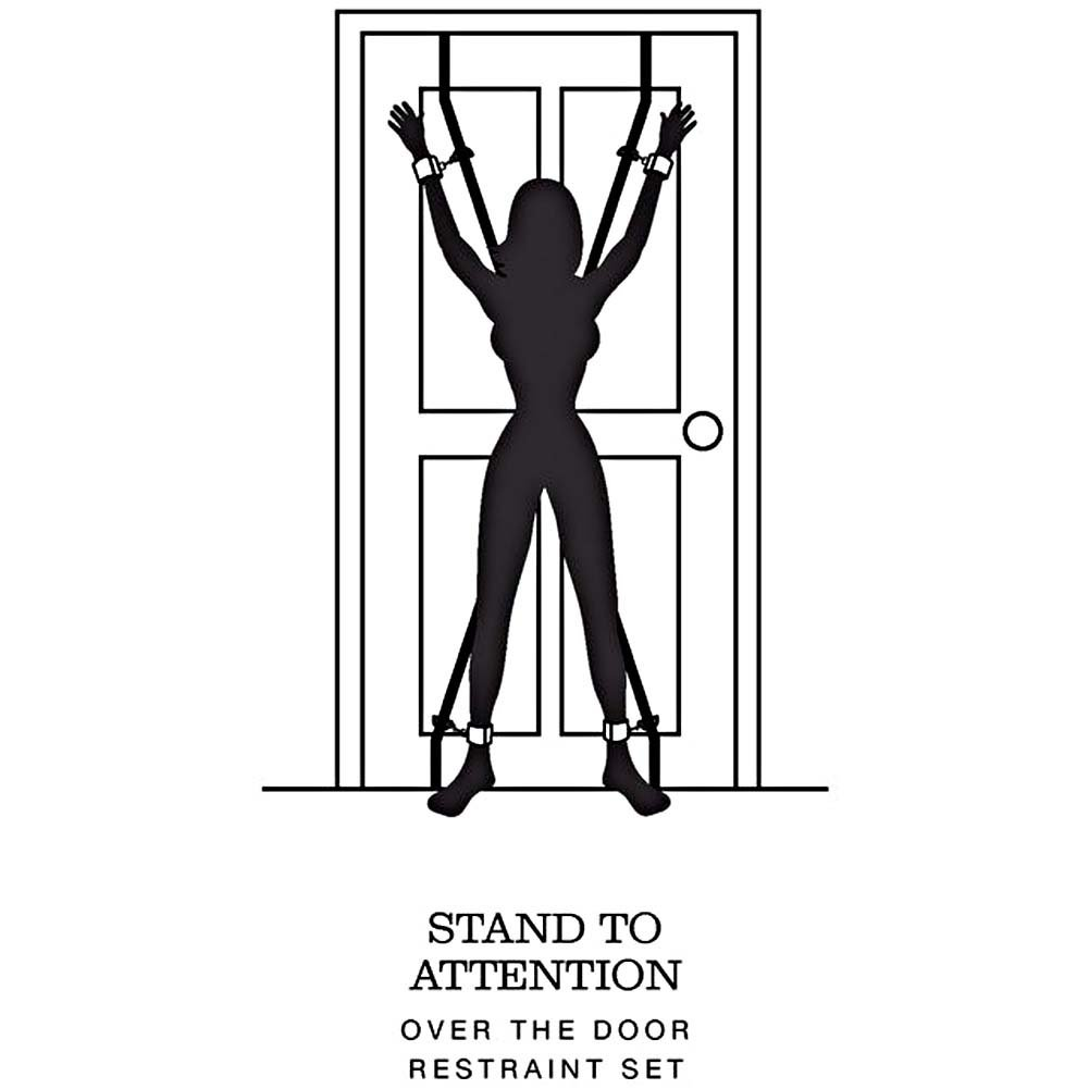 Fifty Shades of Grey Stand to Attention Over the Door Restraint Set Silver - View #1